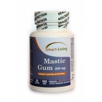 Mastic Gum - Smart Living - 30 cps