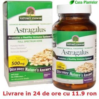 Astragalus - Tratament american pt 90 de zile