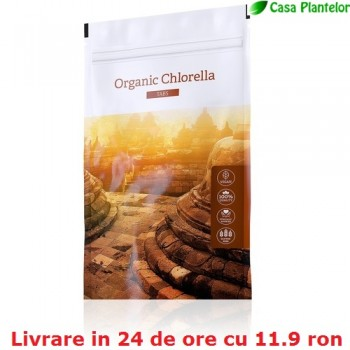 Chlorella - Energy