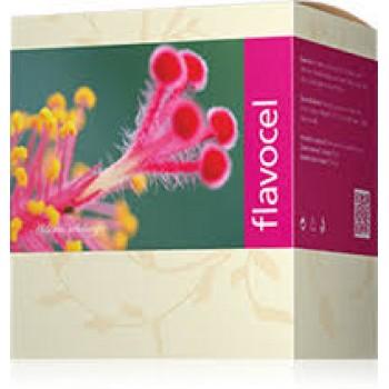 Flavocel - Energy